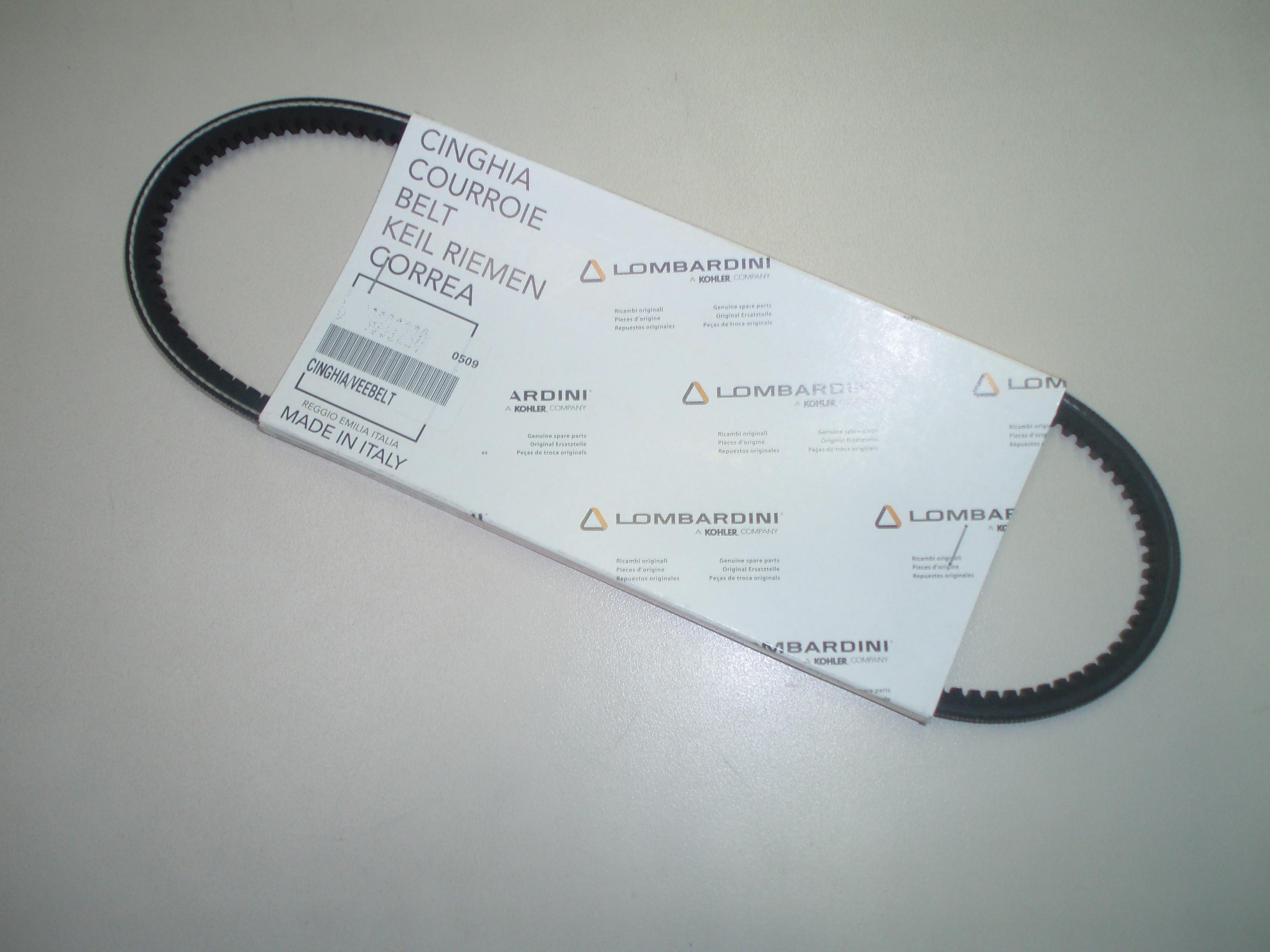 Courroie 875mm 11LD522 LGW627 FOCS602 LDW702 LDW903 LDW1003 LDW1204  LOMBARDINI MD300 MD301 MD350 MD351 RUGGERINI ED0024405150-S Ex. 2440316